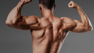 Steroids stay in the body for different periods of time